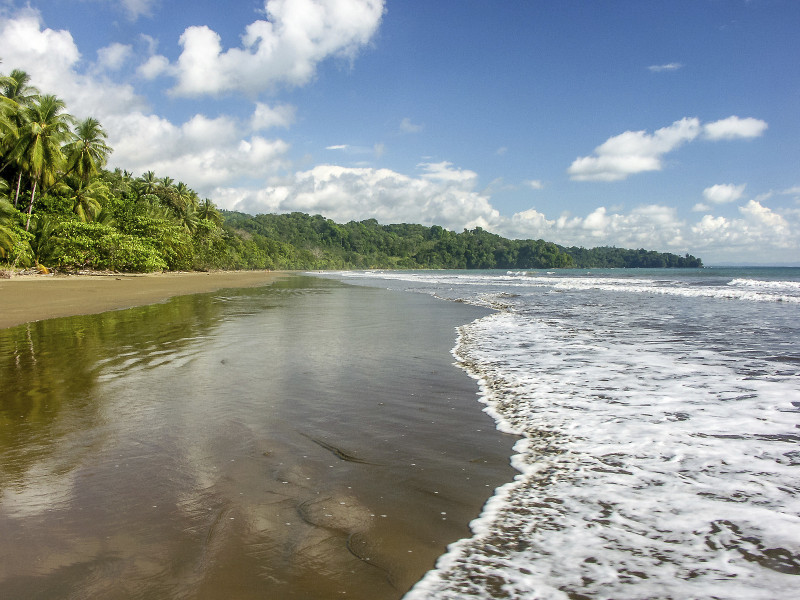Nice beach in Costa Rica